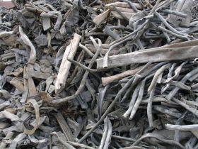 черный металл в Туголесский Бор